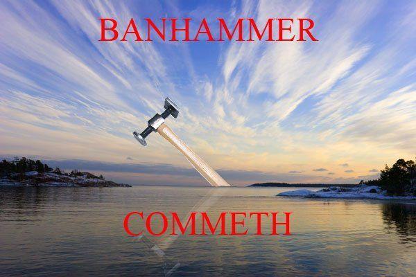 http://i2.kym-cdn.com/photos/images/original/000/024/726/banhammer.jpg