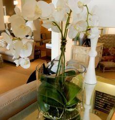 weiß-orchidee-wohnzimmer-dekoration-interieur