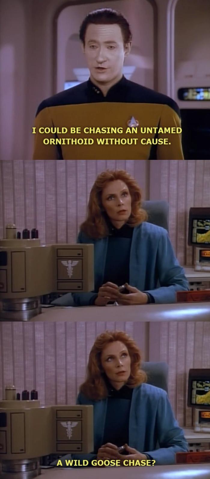 Star Trek: TNG. I seriously love Data. Data and Doctor Beverly Crusher