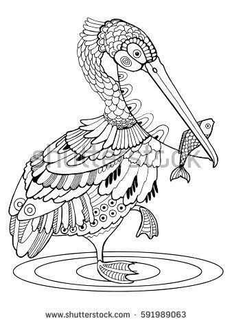 Pelican bird coloring book vector illustration. Black and white lines. Lace pattern