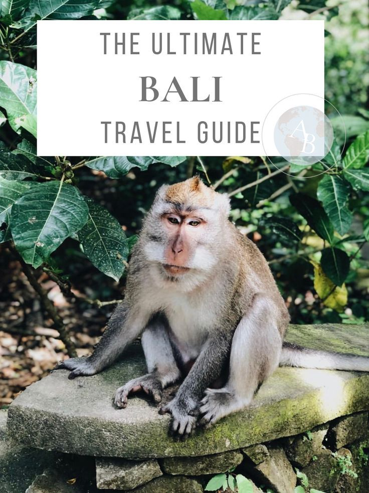 Traveling to Bali? I've created the ultimate B…