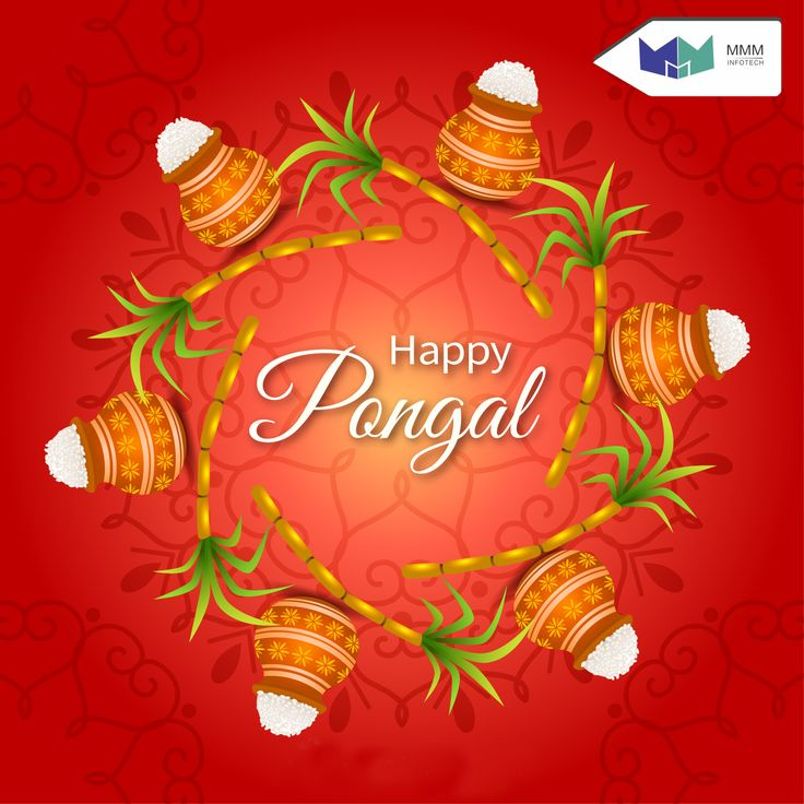 Palakkarai Happy pongal, Happy pongal wishes, Vector free