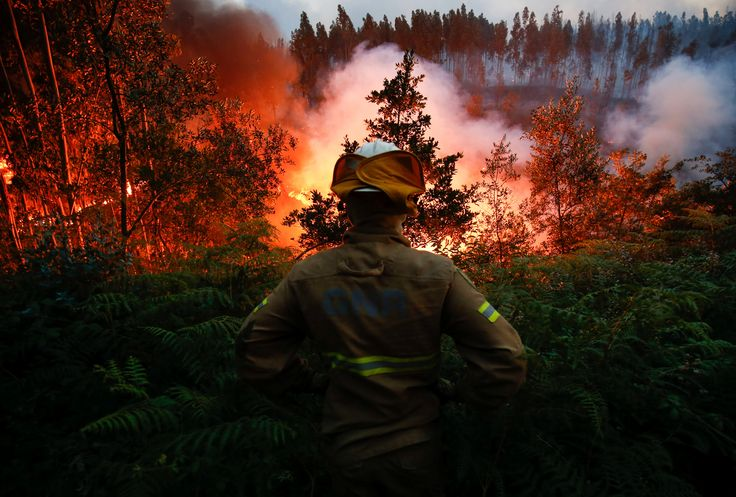A firefighter watches a forest fire near the village of Fato, central Portugal, June 18, 2017. REUTERS/Rafael Marchante via @AOL_Lifestyle Read more: https://www.aol.com/article/news/2017/06/21/firefighters-take-a-rare-break-amidst-portuguese-forest-fires/22528700/?a_dgi=aolshare_pinterest#fullscreen