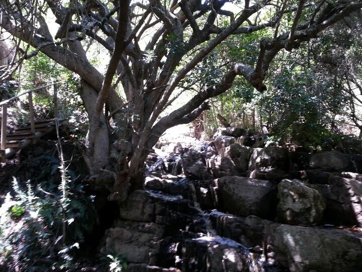 Silvermine waterfall hike