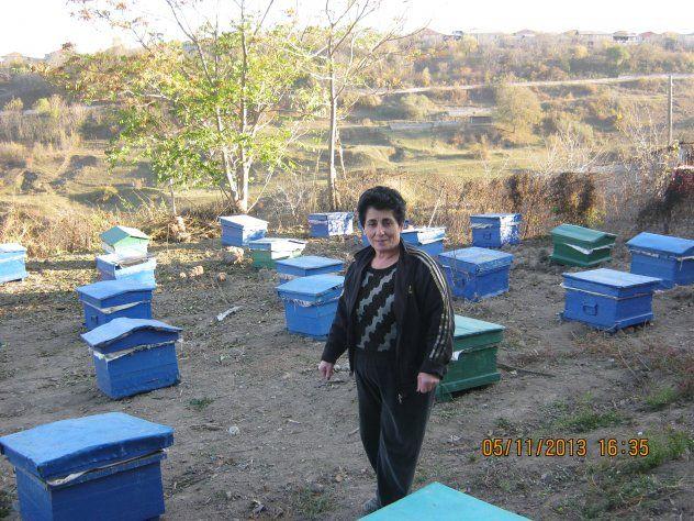 Svetik from Armenia, farmer @ beekeeper