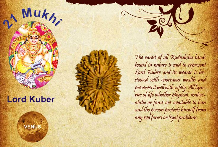 Benefits of Twenty one Mukhi Rudraksha:  God: Lord Kuber / Planet: Venus  The rarest of all Rudraksha beads found in nature is said to represent Lord Kuber and its wearer is bestowed with enormous wealth and preserves it well with safety. All luxuries of life whether physical, materialistic or fame are available to him and the person protects himself from any evil forces or legal problems. http://www.rudralife.com/Rudraksha/details.php?id=40