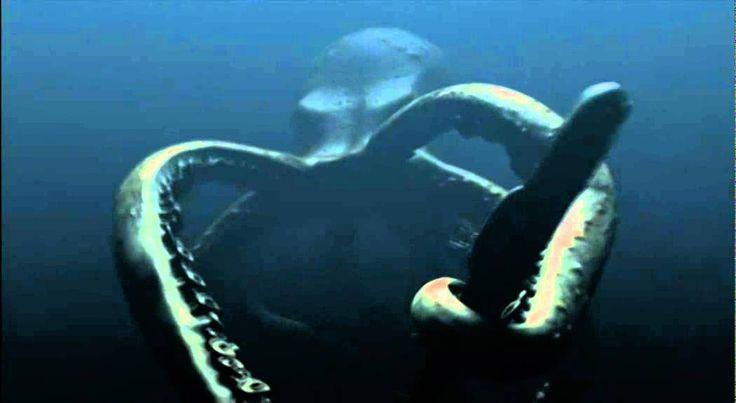 Mega Shark vs Giant Octopus' [best parts]