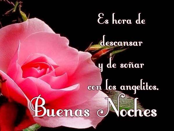 Imágenes con Frases dedicadas de Flores para dar las Buenas Noches