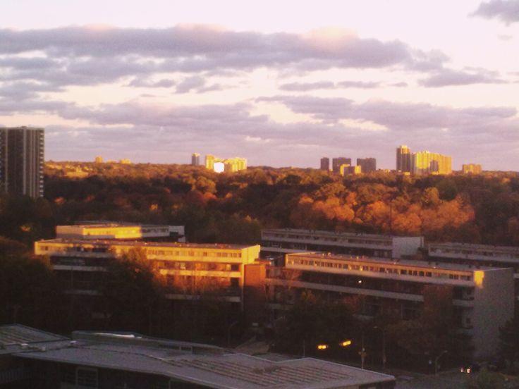 Октябрьское  небо.  Закат.