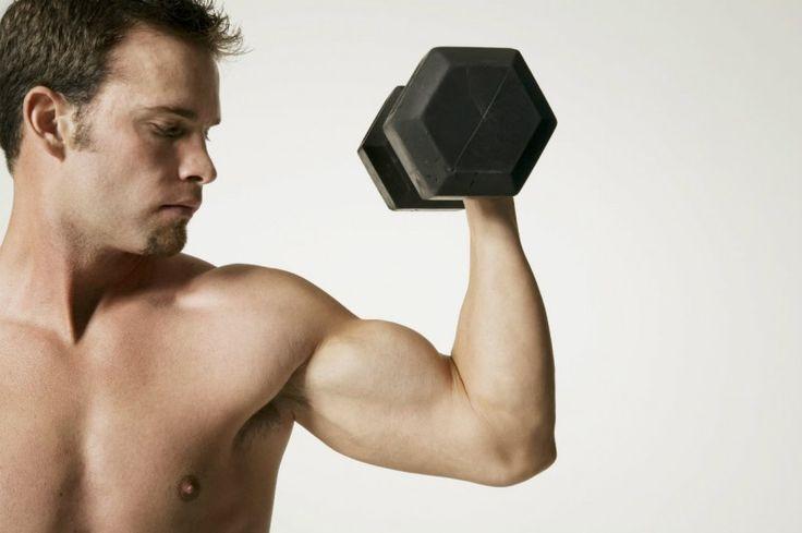 Muscler ses bras en 4 semaines !                                                                                                                                                                                 Plus