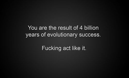 yes.: Evolutionari Success, Real People, Facts, Some People, Infinite States, Bumper Stickers, Evolution Lol, Stupid People, Natural Selection