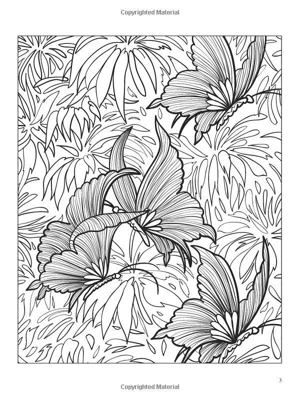 3-D Coloring Book--Butterflies