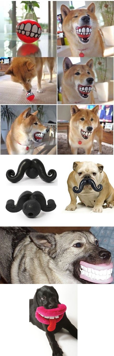 dog toys! So funny