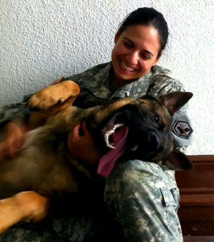A military dog loving and sharing with its handler--they not only serve and protect but love with all their deep hearts....Let's pass laws that bring them all back to furever homes with their handlers or other good families when their service is done.