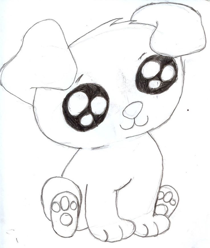 Baby Dog - Pets and Animals - Easy Drawing - how to draw a ...   How To Draw A Baby Puppy