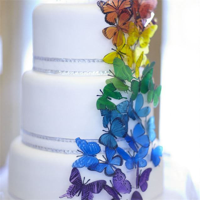 The bride and groom cut into a three tiered, white wedding cake, decorated with lots of rainbow coloured butterflies cascading down one side. It consisted of a fruit tier, a lemon drizzle tier and a chocolate tier with a white chocolate ganache. The delicious cake was made by The Eccles Cakery and was dished up in the evening, following the bacon and sausage sandwiches!The couple are yet to go on a proper honeymoon, but following their wedding they went on a mini-moon to Rome and Cyprus, and…