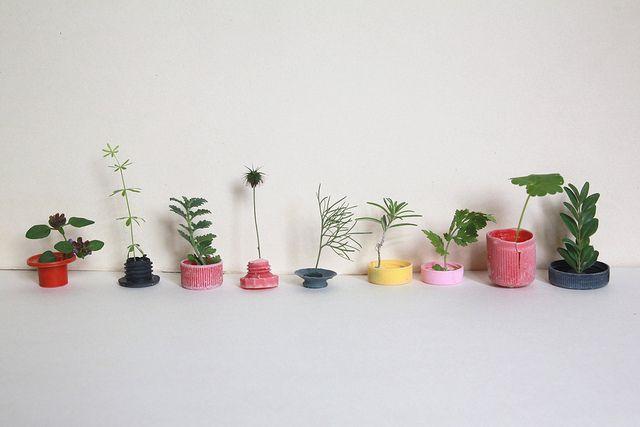 : Plants Can, Design Interiors, Interiors Design, Sabine Timm, Graphics Design, Gardens, Fashion Photography, Small Plants, Flower