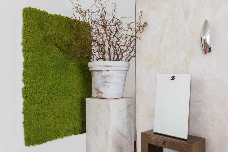 Natural Moss Wall, color may Green - Floemasrl.it