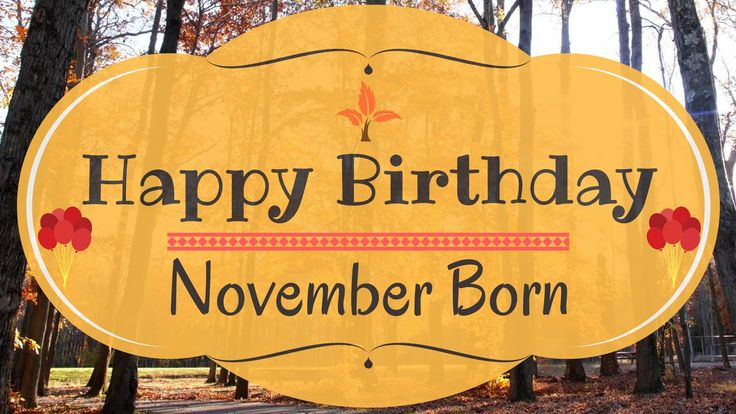 November Born Birthday Card | Gorgeous Happy Birthday Video