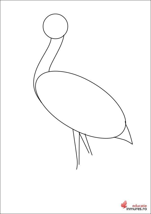 Desenăm picioarele și coada berzei.