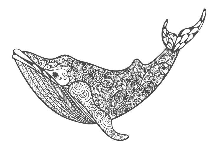 クジラ-大人の塗り絵(無料コロリアージュ)