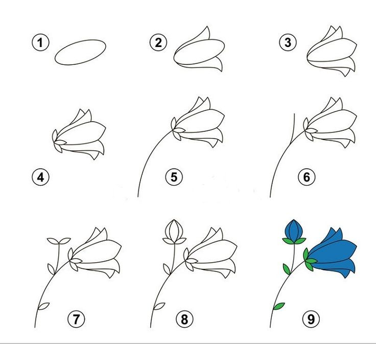 Come disegnare un fiore disegni facili per bambini nove for Paesaggi semplici da disegnare