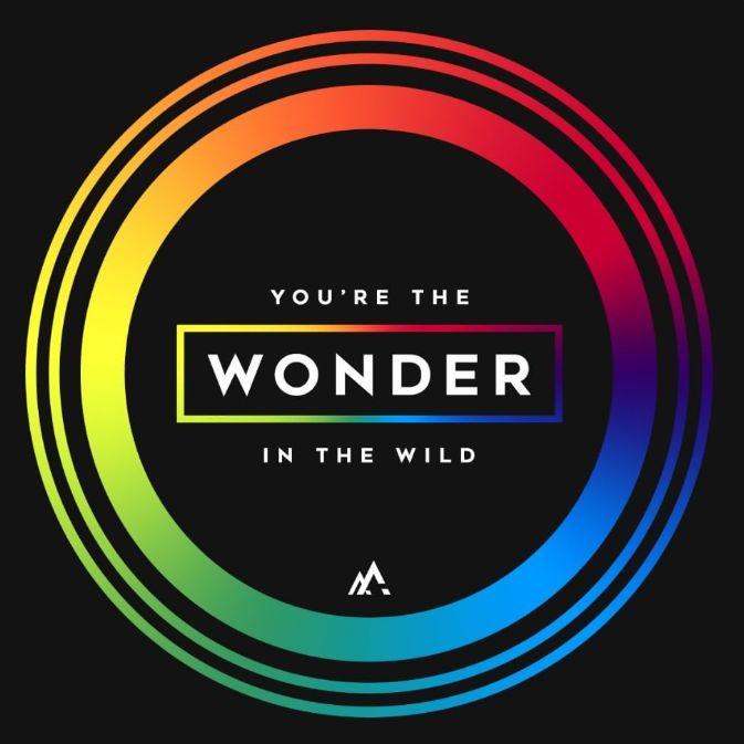 You're the WONDER in the Wild. 'WONDER' by Hillsong UNITED Band https://www.youtube.com/watch?v=haQ1earucJ0&list=PL3deMd8-p5lde6575EISLZ_VqwxOSwvHr