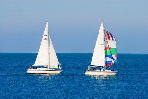 Explorez la baie de Cardigan et ses îles