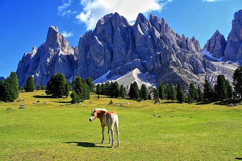 Odle, Alto Adige, Italy