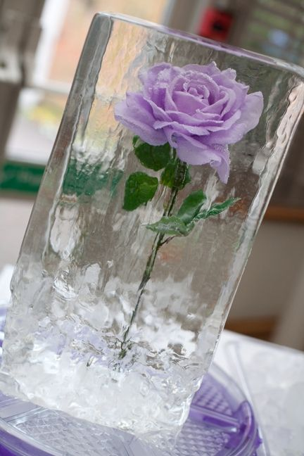 Best images about ice table centrepieces on pinterest