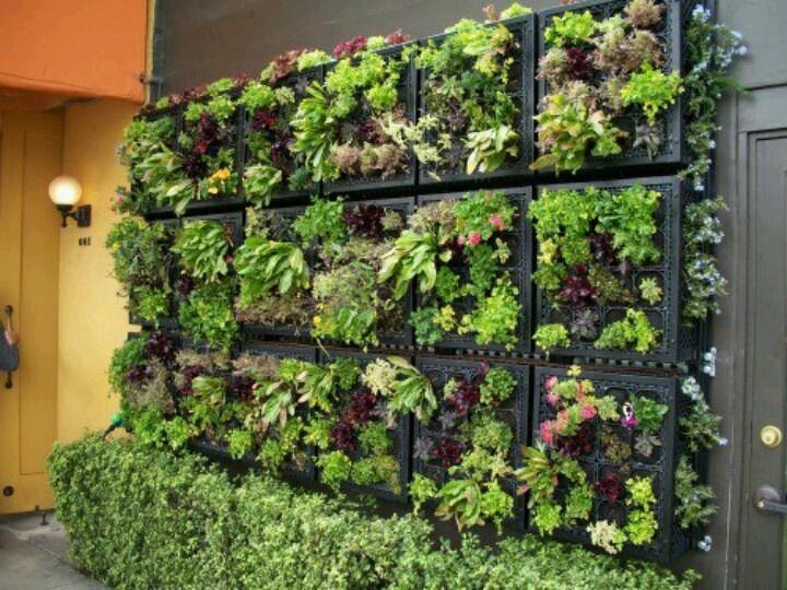 country vegetable garden ideas interior design