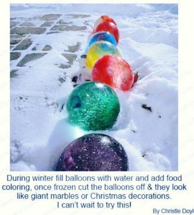 during winter fill balloons with water and add food