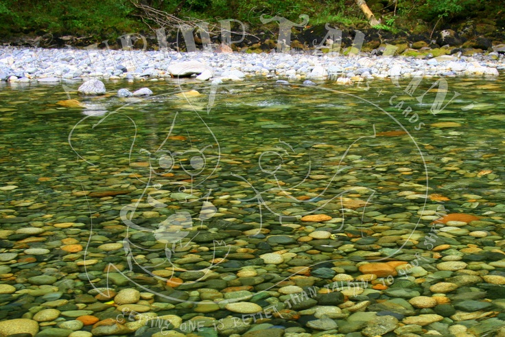 A beautiful green pool on the Coquihalla River, near Hope, BC.