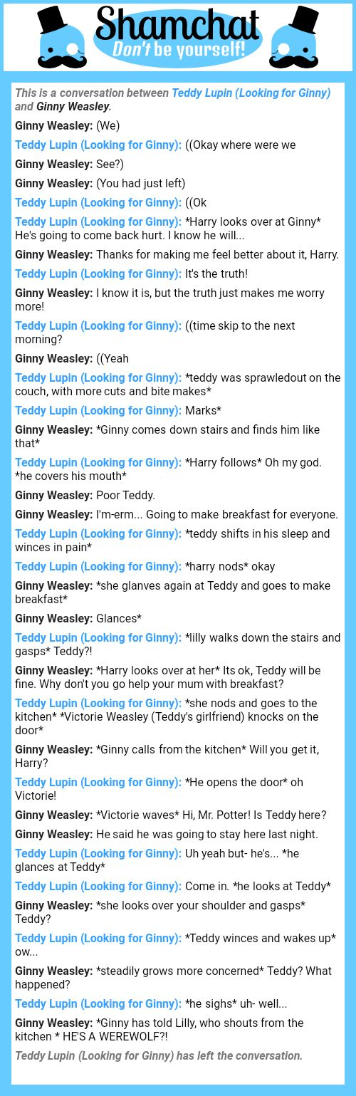 A conversation between Ginny Weasley and Teddy Lupin (Looking for Ginny)