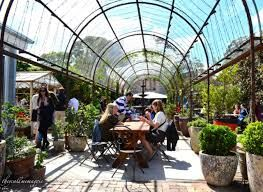 Image result for the grounds of alexandria