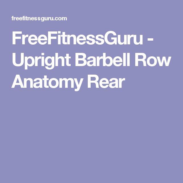 FreeFitnessGuru - Upright Barbell Row Anatomy Rear