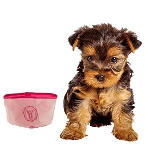 11 best Pet Supplies images on Pinterest | Pet supplies, Amazon ...