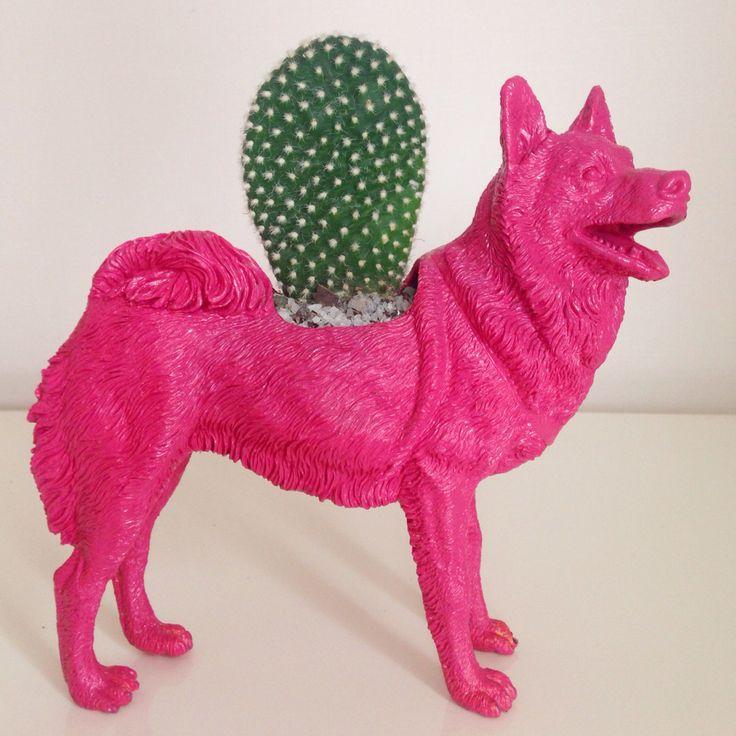 Macetero perro animal cactus  Encuéntranos en Facebook Ohmylove Bazar