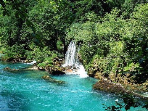 Chutes d'eaux sur la Tara - Montenegro