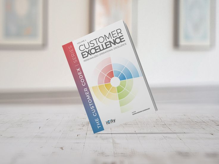 Customer EXCELLENCE™ is the fourth book in the Customer CODEX™ series, covering all facets of customer interactions, customer relationships and customer behavior.