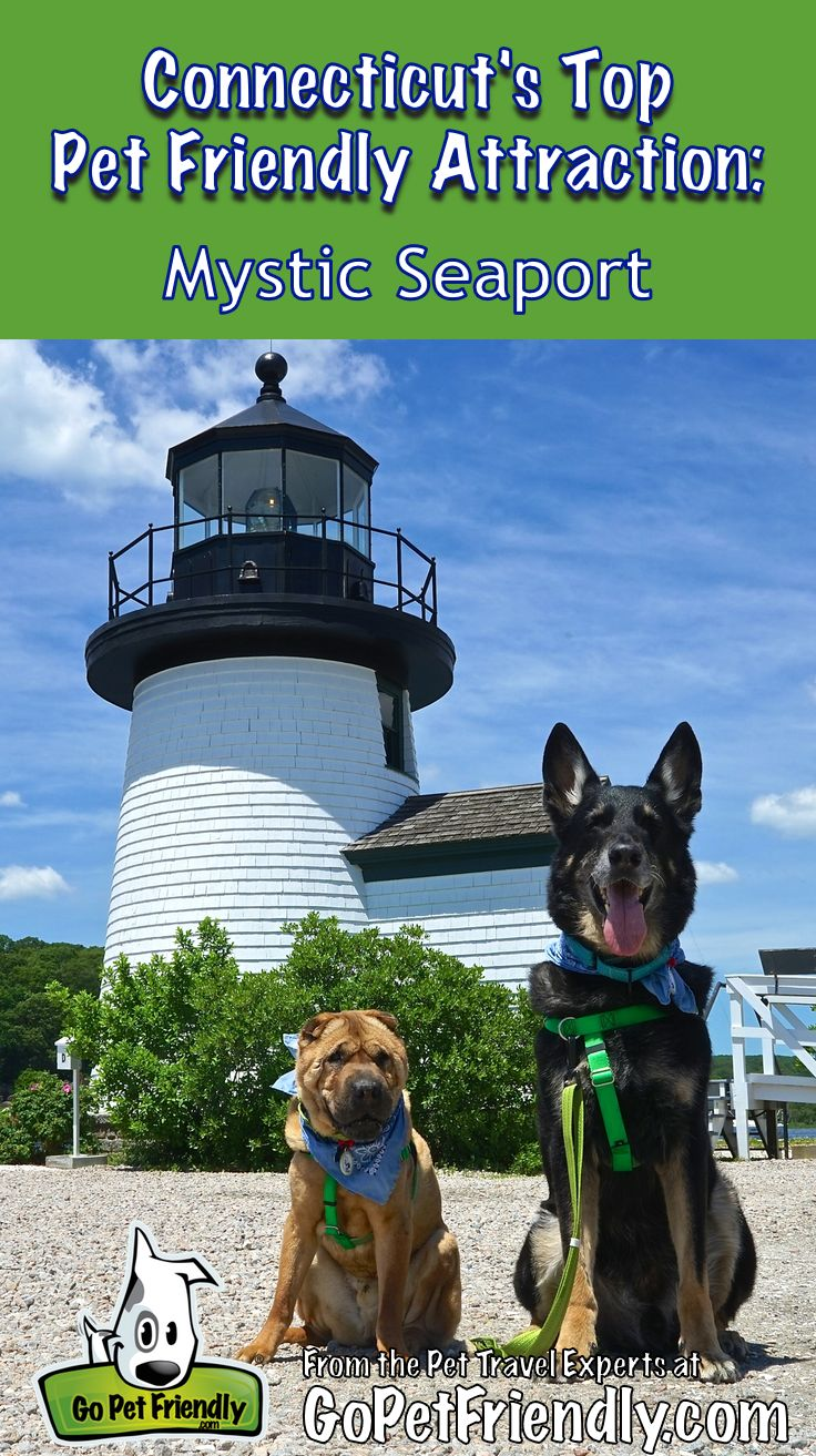 Connecticut's Top Pet Friendly Attraction: Mystic Seaport | GoPetFriendly.com