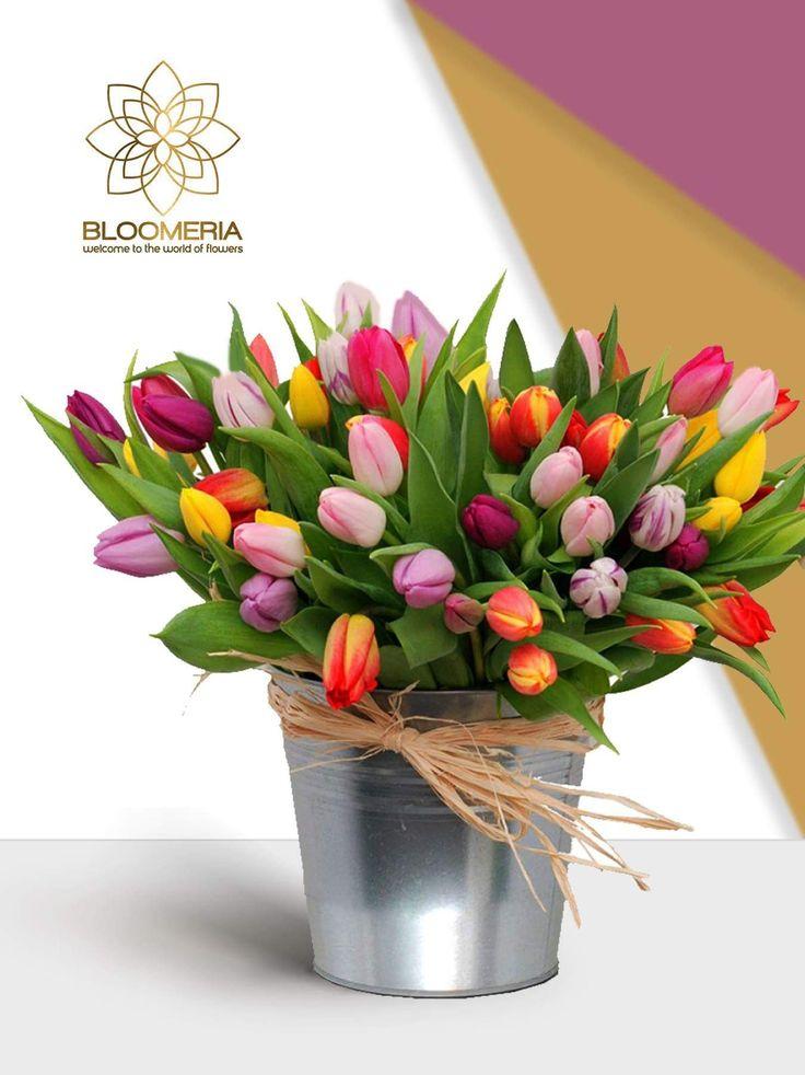 Îndrăgite în toate colţurile lumii, lalelele sunt flori pline de mister şi semnificaţii. Acestea se vindeau în pieţele europene la preţuri uriaşe şi împodobeau casele nobililor, fiind o dovadă de rafinament şi lux. Astăzi, ele reprezintă un dar plin de gust şi încântător.