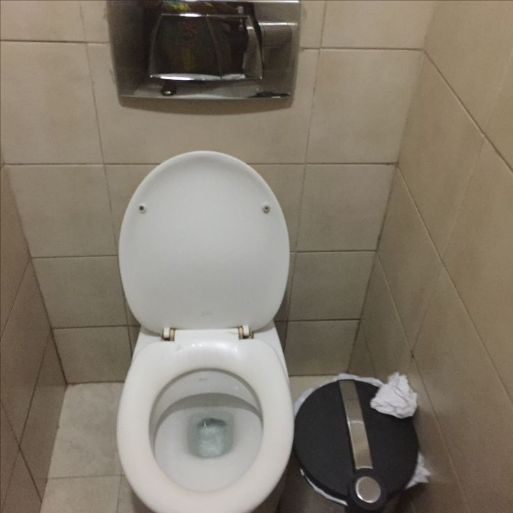 19 best World Toilet Day images on Pinterest | Bathrooms, Toilet and ...