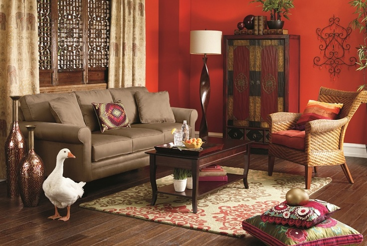 Rescued goose in a living room with a Pier 1 Twisted Wood Floor Lamp