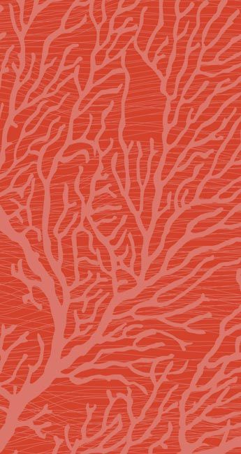 Note from CLE: This is the color of coral that I am aiming for - could go lighter or darker, more orange or pink, but need to stay in a close range for hue.