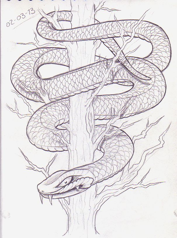Image result for wrapped snake drawing | Surreal in 2019 ...