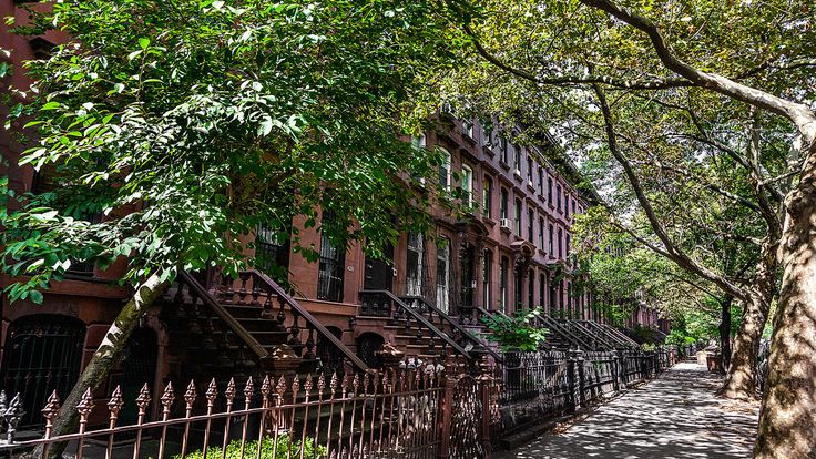 NASA Explains Why You Should Live On A Tree-Lined Street--And A Tree-Lined City | Co.Exist | ideas + impact