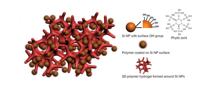 This is an illustration of a new battery electrode made from a composite of hydrogel and silicon nanoparticles (Si NP). Each Si NP is encapsulated in a conductive polymer surface coating and connected to a three-dimensional hydrogel framework. (Credit: Yi Cui, Stanford University) #battery #lithiumion #silicon #liion #Stanford