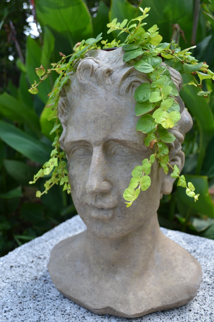 96 Best Head Planters Images On Pinterest Head Planters