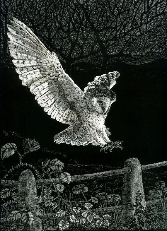 Barn Owl Landing by Kay Leverton